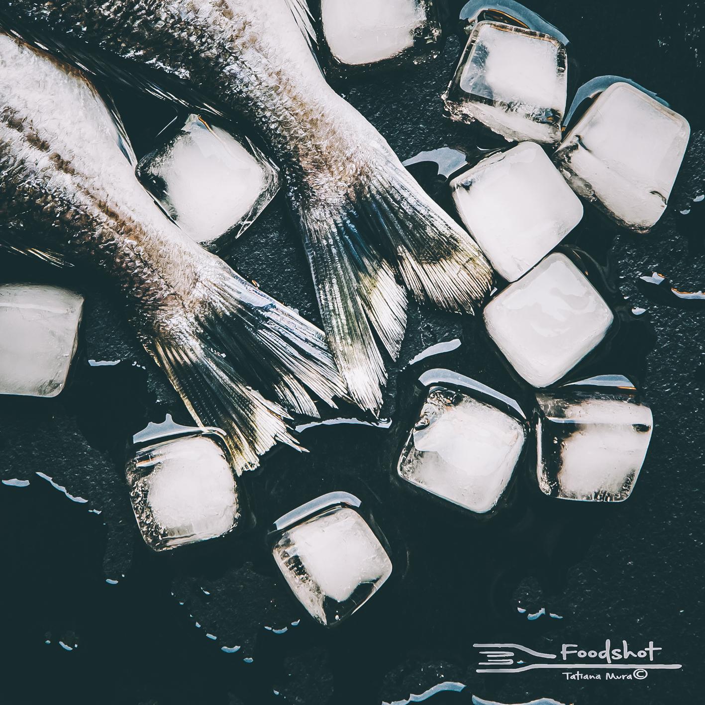 fish, pesci, food